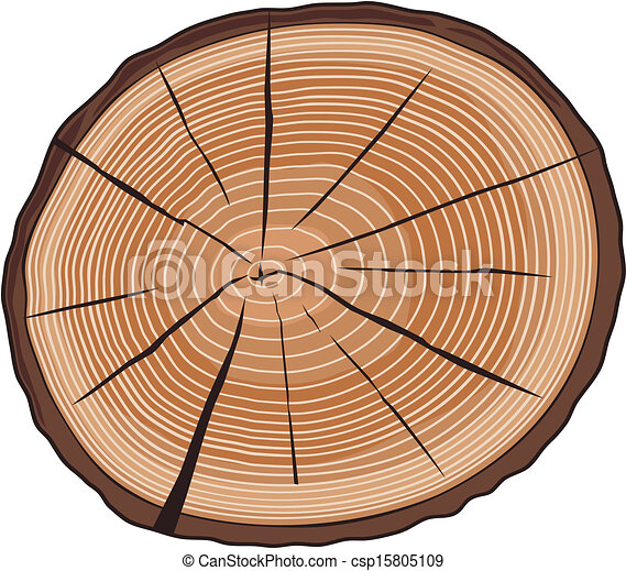 Vector Clipart of tree rings (cross section of tree, wood cross ...
