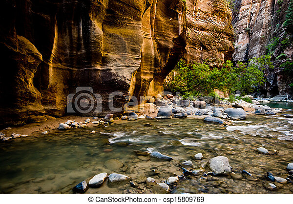 Scenery from The Narrows hike at Zion National Park. - csp15809769