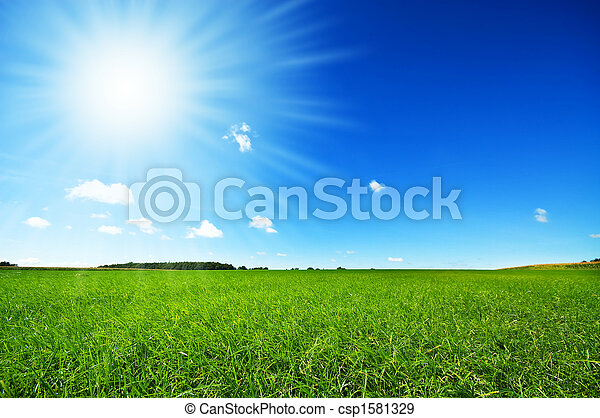 fresh green grass with bright blue sky and sunburst background