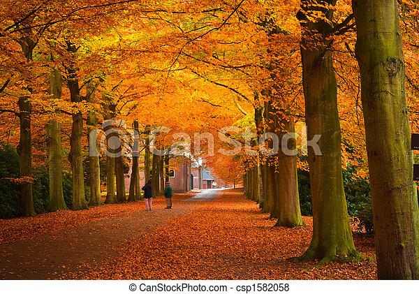 otoño, colores - csp1582058