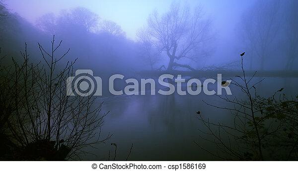 spooky background - csp1586169