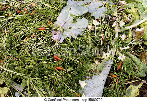 A compost heap with plant remains.