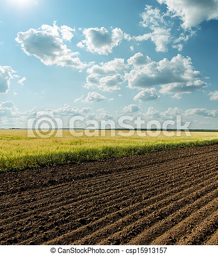 black and green agriculture field and cloudy sky - csp15913157