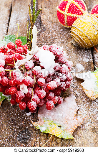 snow has sprinkled the fruits
