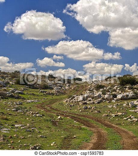 winding dirt road - csp1593783