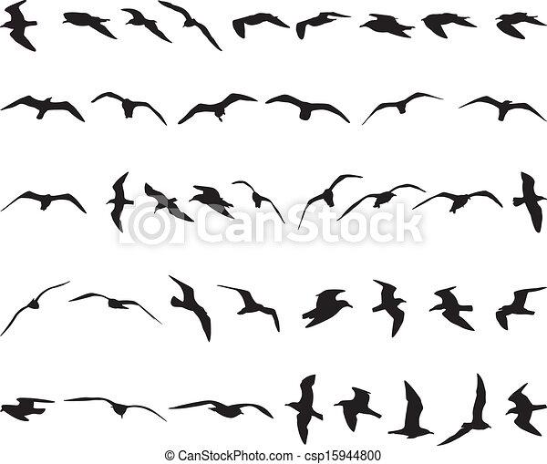 Clipart vecteur de mouettes quarante mouettes voler - Dessins de mouettes ...
