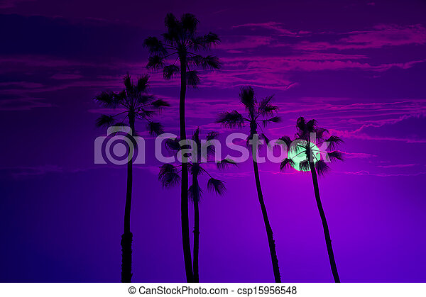 California high palm trees sunset sky silohuette - csp15956548