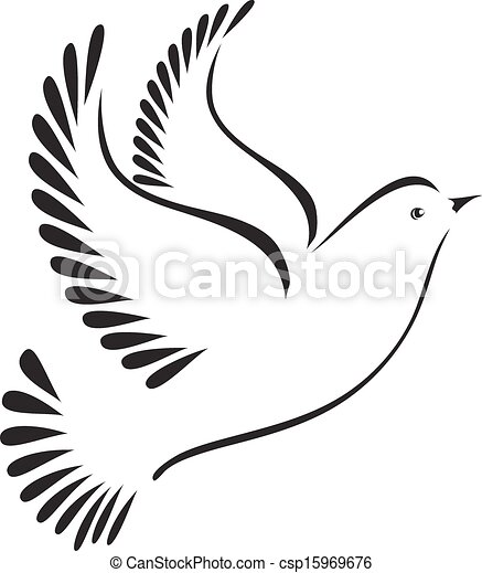 Dove or bird - csp15969676