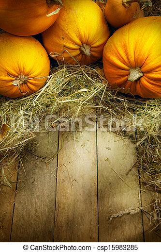 art thanksgiving pumpkins autumn background - csp15983285