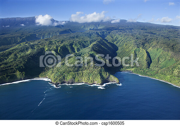 海岸線, ハワイ \ - csp1600505