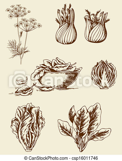 Vintage vegetables - csp16011746