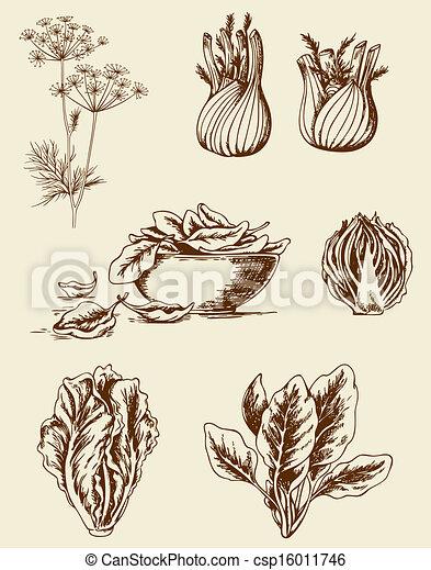 Vintage vegetables - csp16011746