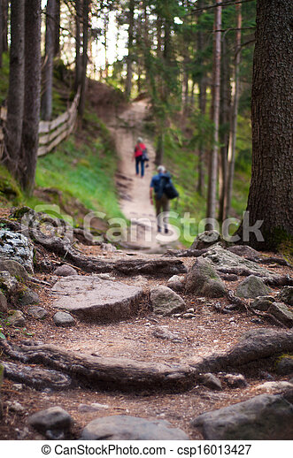 Two hikers on a mountain trail - csp16013427