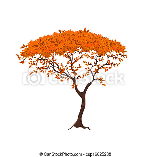 Beautiful tree for your design - csp16025238