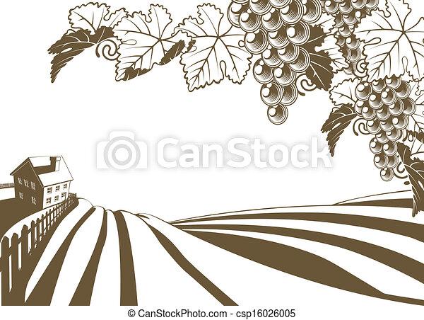 Clipart Vecteur de VIGNOBLE, vigne, ferme, illustratio ...
