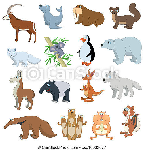 Various Wildlife Animals set - csp16032677