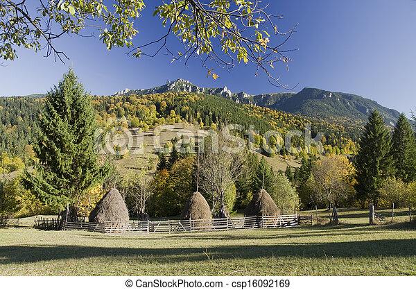 rural landscape - csp16092169