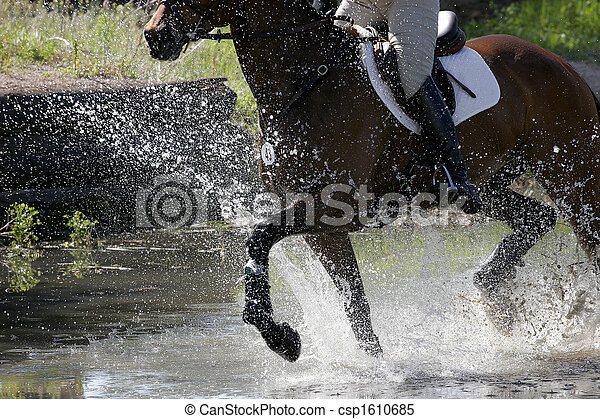 Equestrian Splashing Water - csp1610685