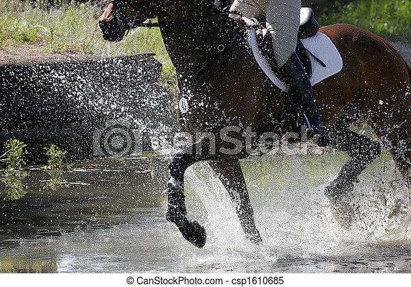 Equestrian Splashing Water - csp1610685