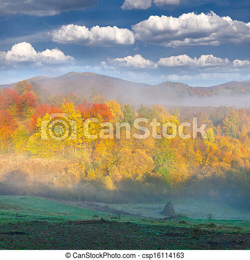 Foggy autumn landscape in the mountains - csp16114163