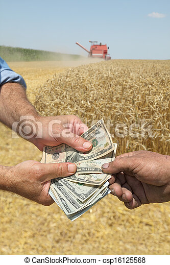 Agriculture, wheat harvest - csp16125568