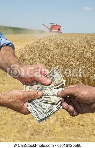 Agriculture, wheat harvest - csp16125568