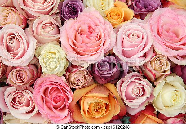 stock foto von rosen farben wedding pastell braut blume einrichten csp16126248. Black Bedroom Furniture Sets. Home Design Ideas