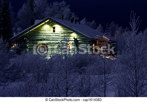 Winter night in Lapland - csp1614383