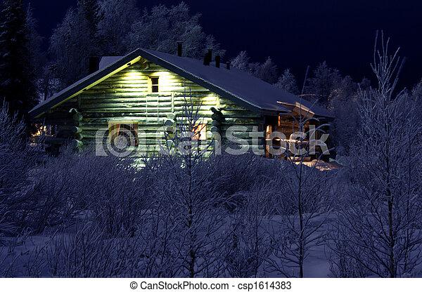 Winter night in Lapland - csp1614383