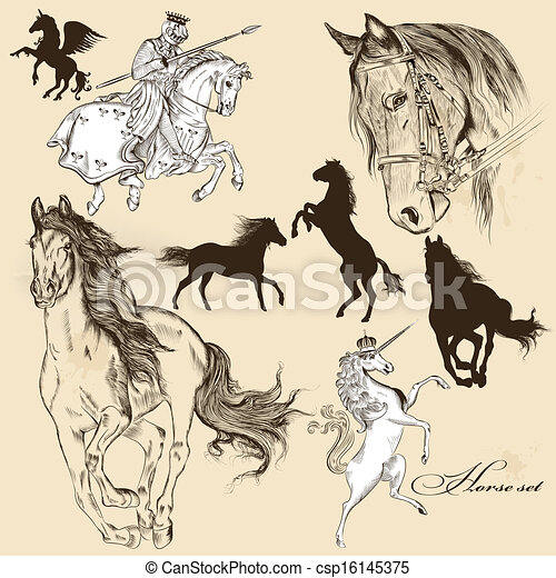 Collection of vector detailed horse - csp16145375