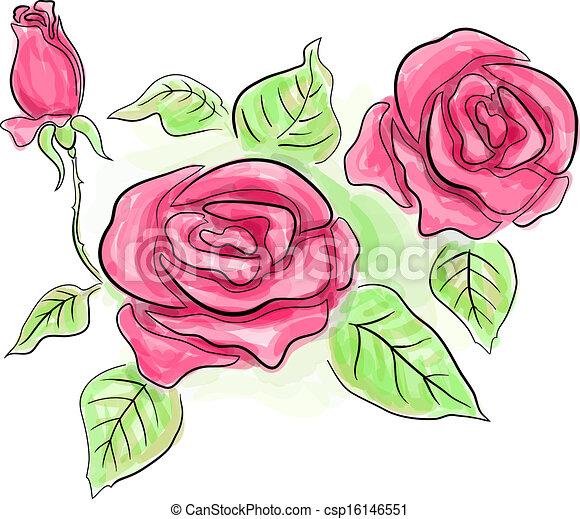 Clipart vectorial de Bosquejo, rosa, rosas, transparente, colores ...