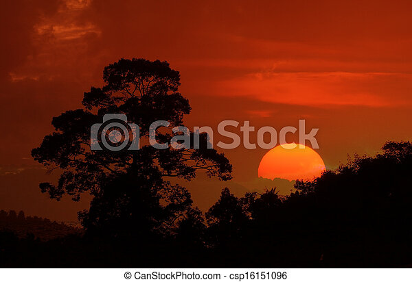 Beautiful landscape image with trees silhouette at sunset - csp16151096