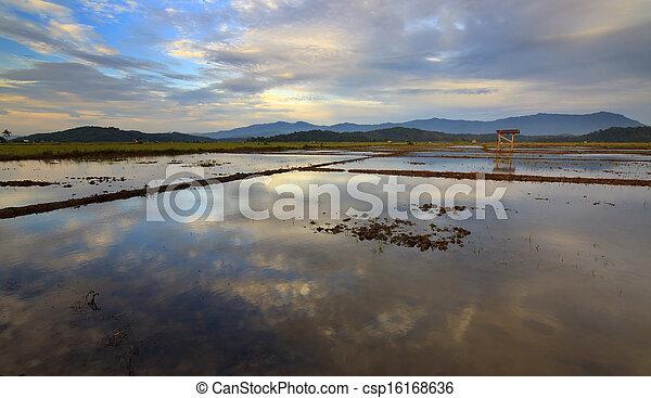 Rural scene deep inside Borneo - csp16168636