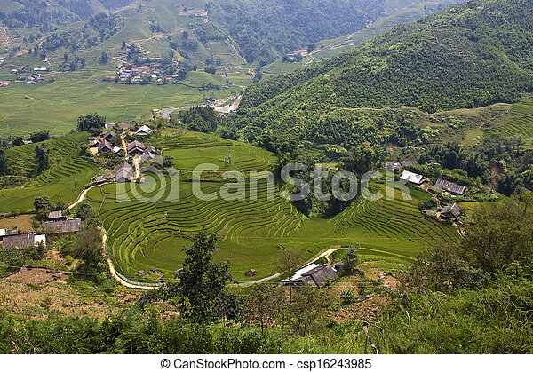 Paddy fields and small villages in mountains of northern Vietnam - csp16243985