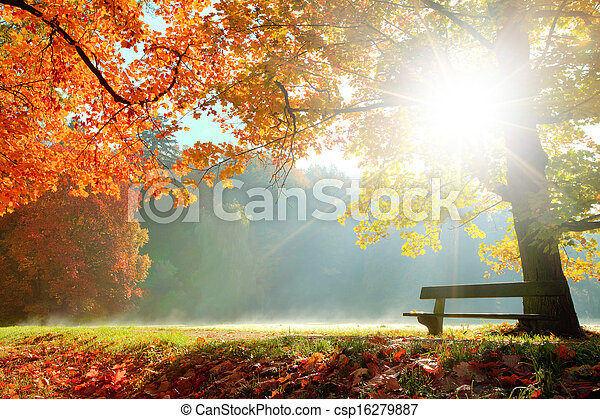 otoño, paisaje - csp16279887