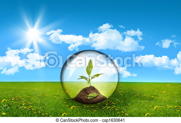 Glass sphere with plant in a field of tall grass - csp1630641