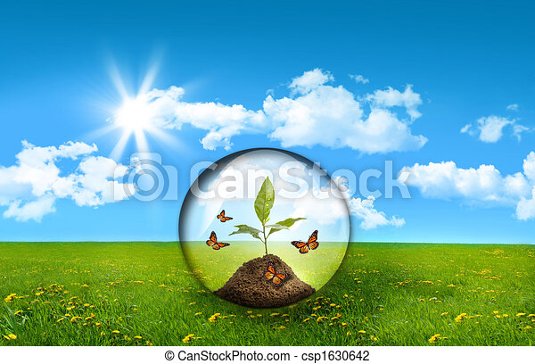 Glass sphere with plant in a field of tall grass - csp1630642