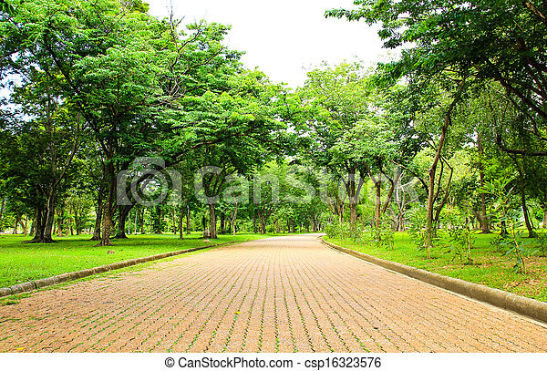 Walkway in the park - csp16323576