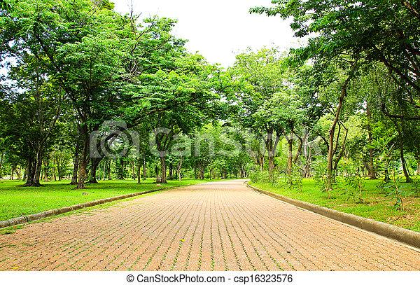Walkway in the park - csp16323576
