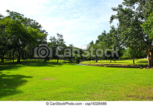 Green trees in park - csp16326486