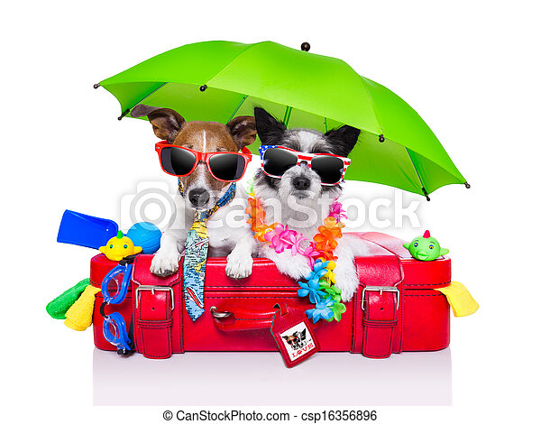 holiday dogs - csp16356896