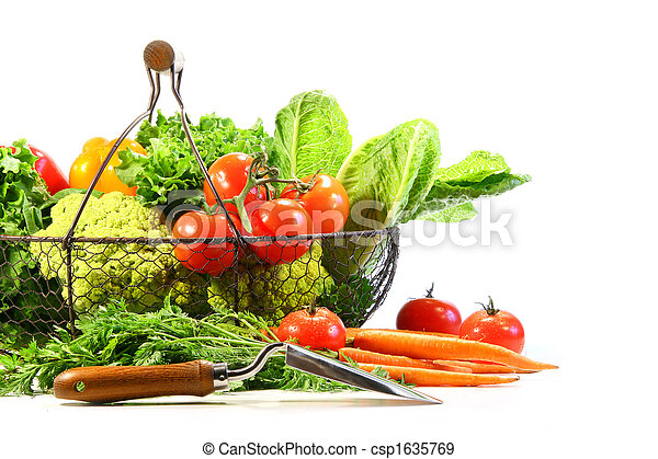 Summer vegetables with garden shovel - csp1635769