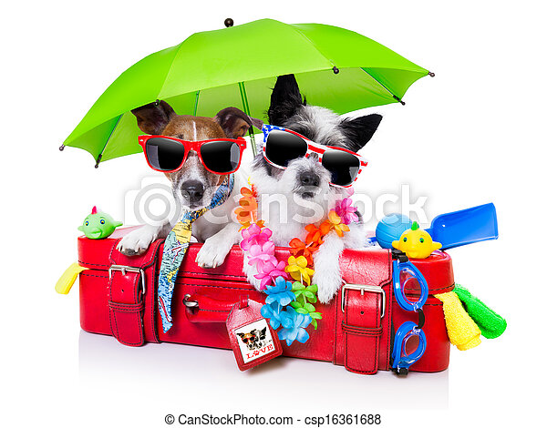 holiday dogs - csp16361688