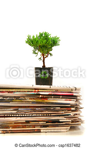 Plant on top of pile of newspapers - csp1637482