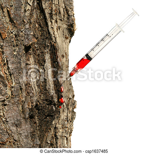 Syringe inserted into tree trunk on white - csp1637485