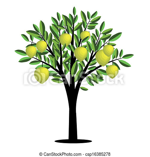Lemon Tree Artwork Lemon Tree Stock Illustrations