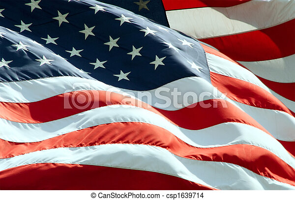 Waving American Flag - csp1639714