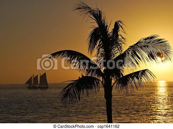 Sail Away - csp1641162