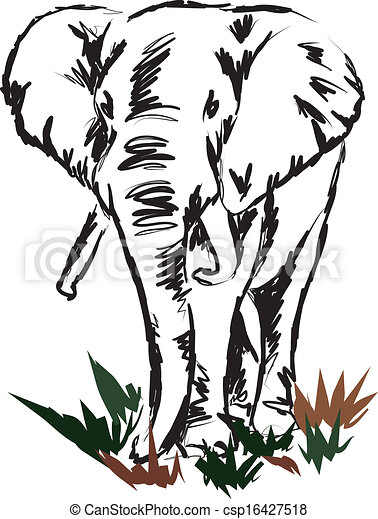 elephant illustration - csp16427518