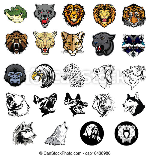 Illustrated set of wild animals and - csp16438986